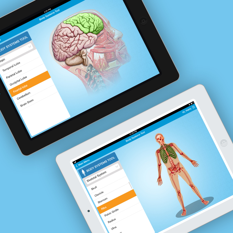 Body Systems Tool Feature - Exercise Buddy - Digicorp